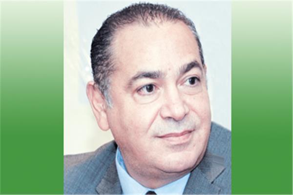 د. هشام عطية