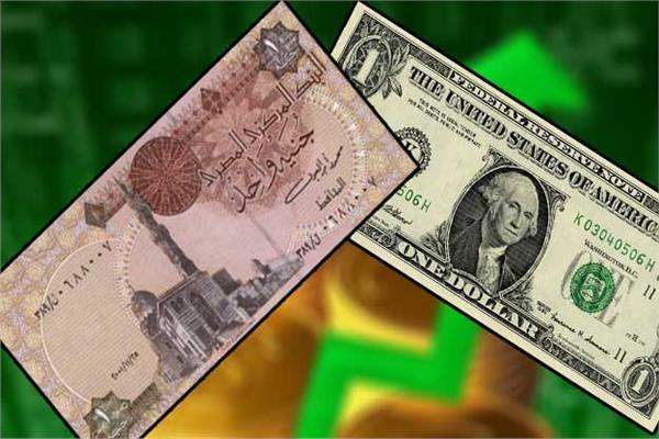 الجنيه المصري و الدولار الأمريكي