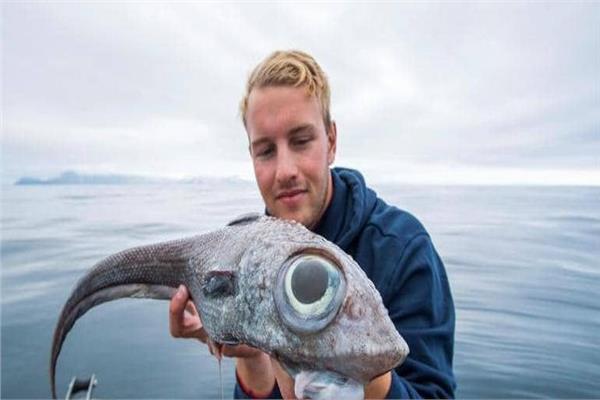 الصياد النرويجي مع السمكة الغريبة