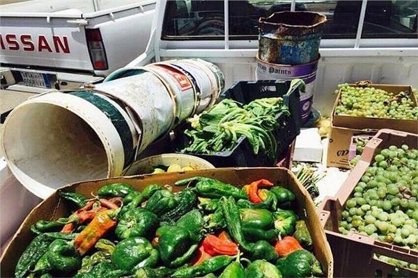منتجات حاصلات زراعية مجهولة المصدر