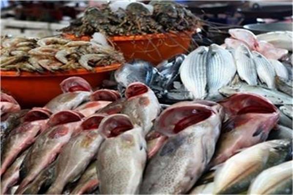 «أسعار الأسماك» في سوق العبور
