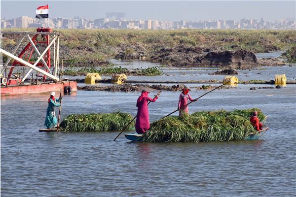 حلم «صيادي مريوط» يتحقق.. ونقيبهم: الدولة تبني بحيرة جديدة