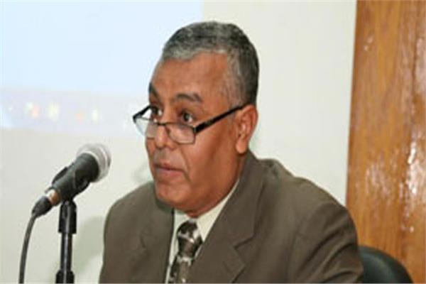الدكتور يوسف الغرباوي، رئيس جامعة جنوب الوادي