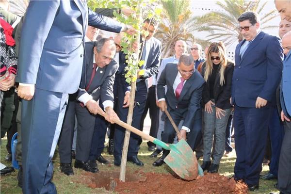 د. عز الدين أبوستيت - وزير الزراعة واستصلاح الأراضي