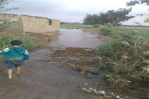 منسوب النيل