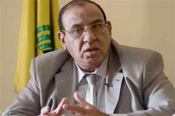 الدكتور طلعتعبدالقوى رئيس اتحاد الجمعيات الأهلية