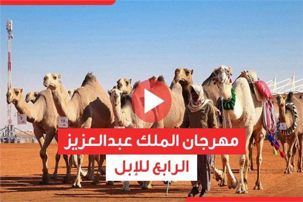 مهرجان الملك عبدالعزيز الرابع للإبل