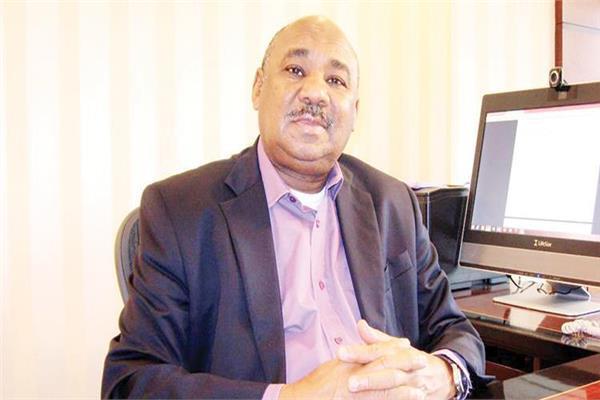 وزير المالية السوداني