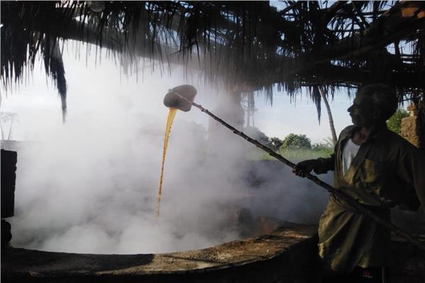 سر العصير والمصاص.. طباخ العسل الأسود «إيده تتلف في حرير»