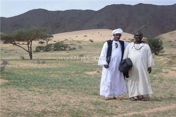 العريس له وزير وكرباج.. رحلة إلى «البشارية» على حدود مصر