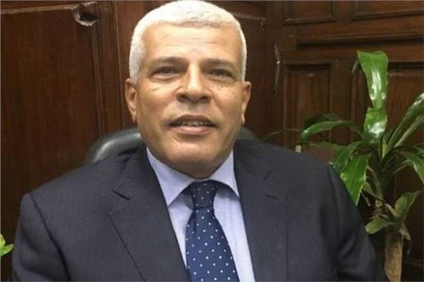 الدكتور سيد خليفة