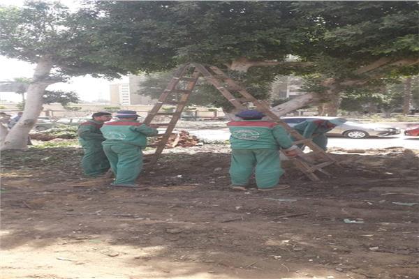 إنشاء حديقة عامة بشارع النصر