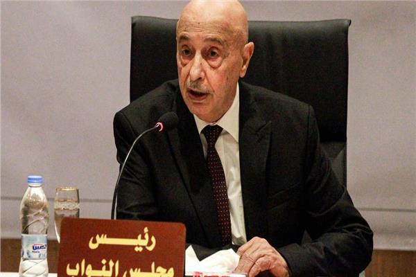 المستشار عقيلة صالح رئيس مجلس النواب الليبي
