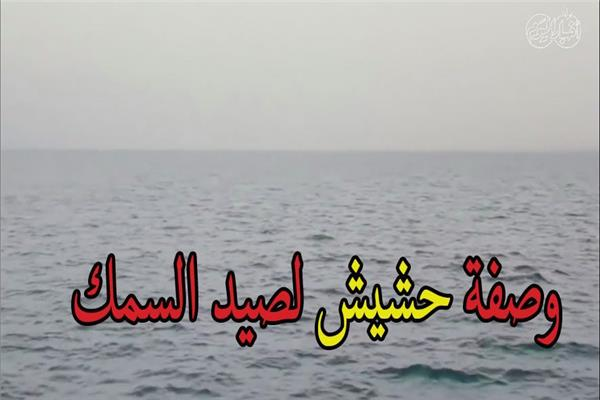 في زمن الكورونا وصفة «حشيش» لصيد الأسماك