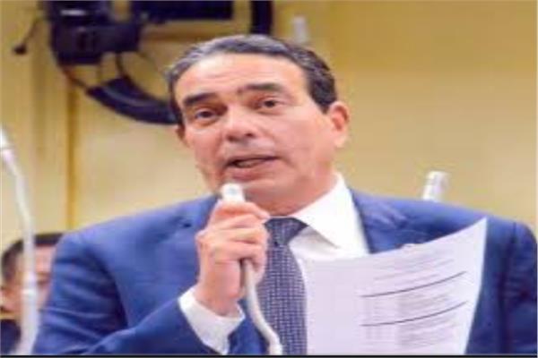 النائب الدكتور أيمن أبو العلا