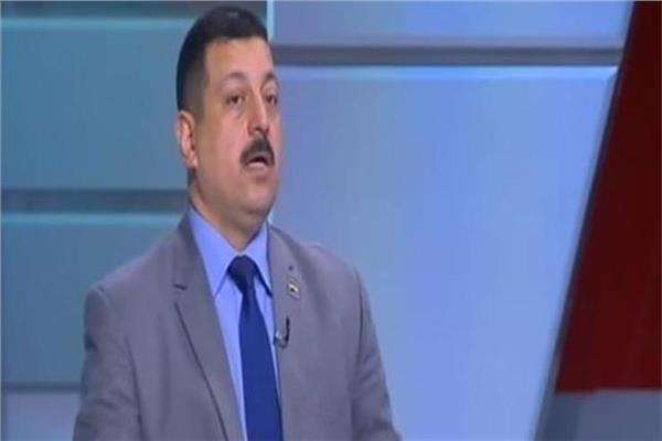 الدكتور أيمن حمزة المتحدث الرسمي باسم وزارة الكهرباء