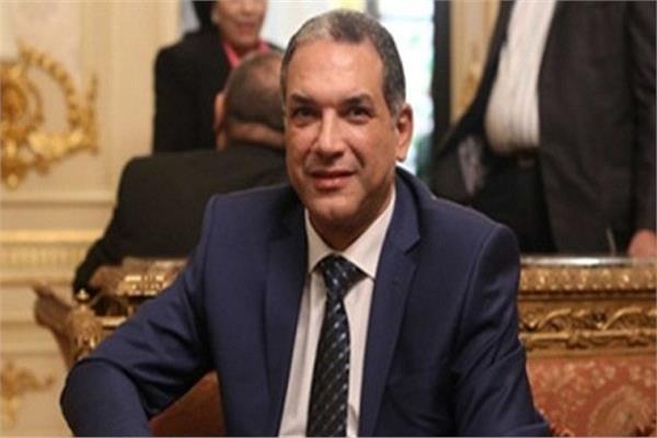 النائب نبيل بولس عضو مجلس النواب
