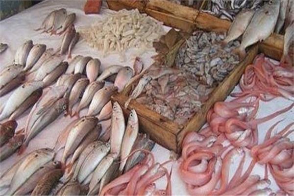 أسعار الأسماك في سوق العبور