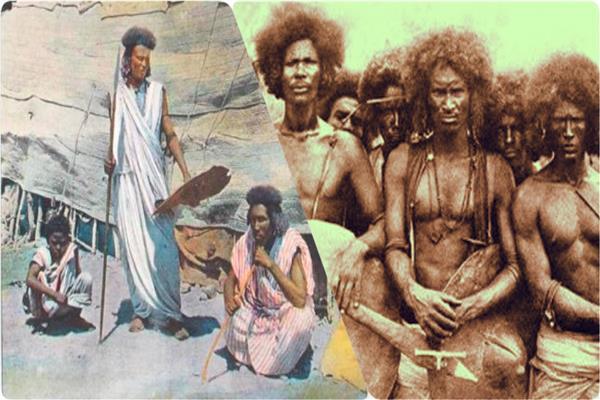 قبائل البجا