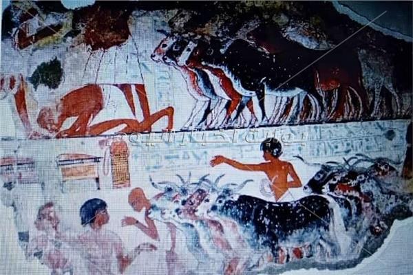 """تعرف علي """"الأضحية """" فى مصر القديمة والموروث الحضارية"""