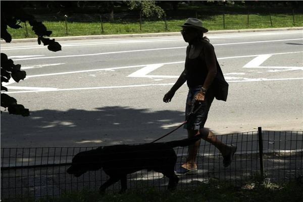 بعد أن التقط عدوى من مالكه.. نفوق أول كلب أصيب بكورونا في نيويورك