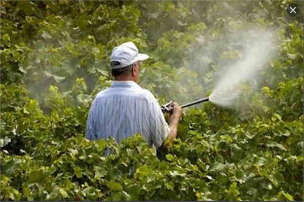 الزراعة تشدد الرقابة على المبيدات