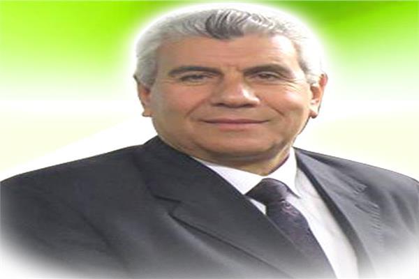 المهندس ياسر الشهاوى