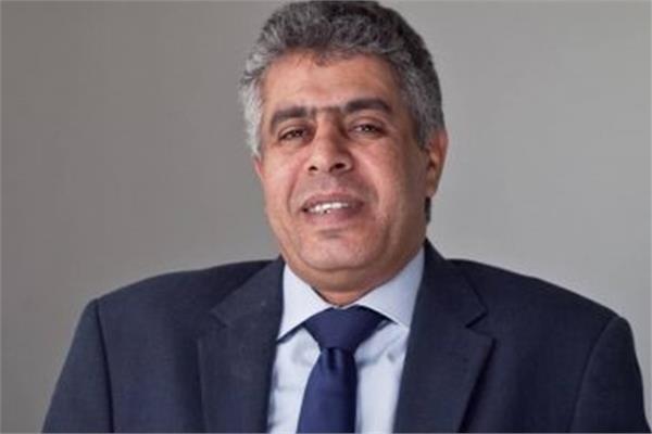 عماد الدين حسين، عضو مجلس الشيوخ
