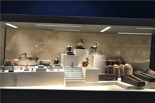 متاحف شرم الشيخ وكفر الشيخ والمركبات الملكية تستقبل زائريها غدًا