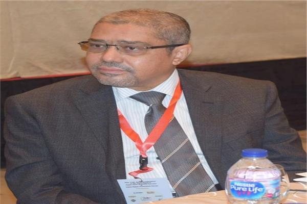 المهندس ابراهيم العربي رئيس مجلس الاعمال المصري الياباني