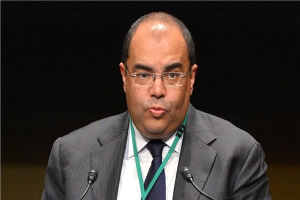 الدكتور محمود محي الدين