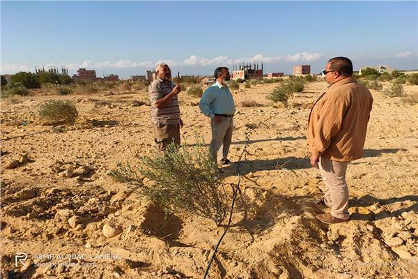 خلال  تفقد مركز التنمية المستدامة لموارد مطروح للمناطق الصحراوية