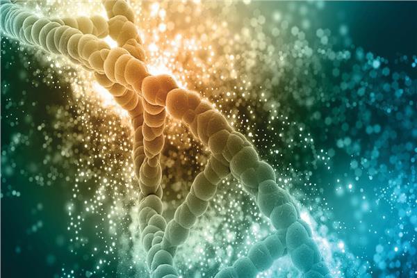 صورة «خريطة الجينوم والطب الدقيق».. قفزة طبية للحفاظ على صحة المصريين