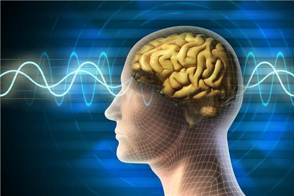 صورة تقنية جديدة للتحكم في حركات الجسم إلكترونياً وفي إشارات العقل