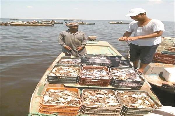 خيرات بحيرة «البردويل» بين أيادى الصيادين