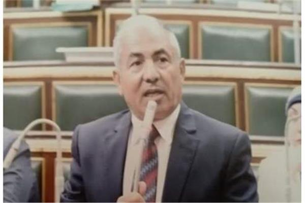 النائب أحمد العوضى، رئيس الهيئة البرلمانية لحزب حماة الوطن