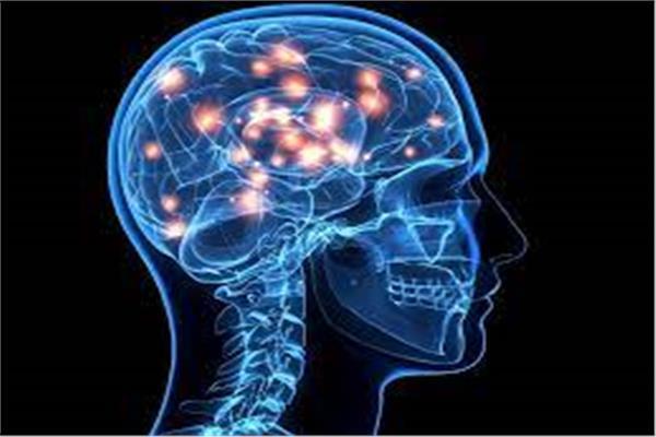 تدفق الدم في المخ