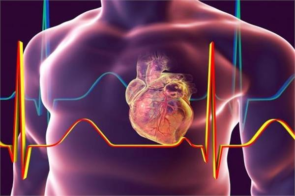 تضخم القلب