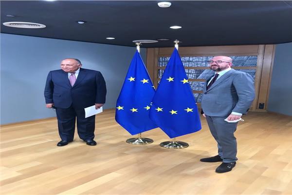 شكري يلتقي برئيس المجلس الأوروبي