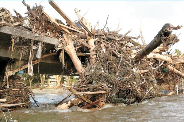 أشجار مقتلعة ومقلوبة على جسر دمر بسبب الفيضانات فى الماني
