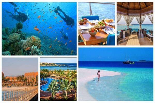 صورة مجمعة للمنتجعات السياحية المصرية