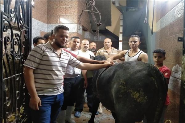 الذبح ثاني أيام العيد