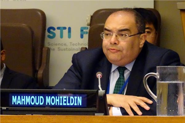 الدكتور محمود محيي الدين المدير التنفيذي لصندوق النقد الدولي