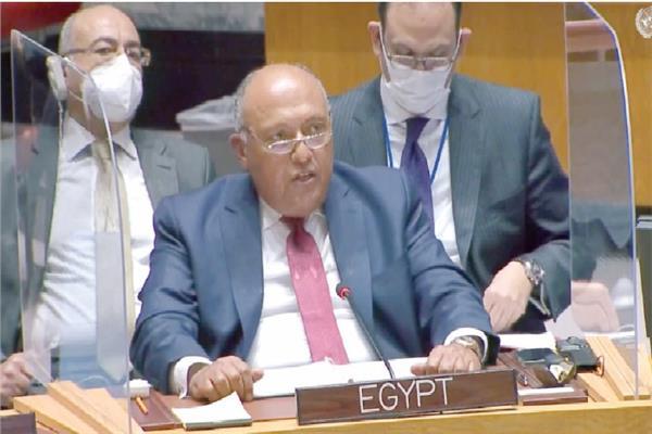 وزير الخارجية سامح شكرى فى جلسة مجلس الأمن