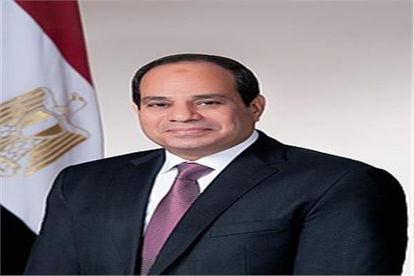 رئيس الجمهورية عبد الفتاح السيسي