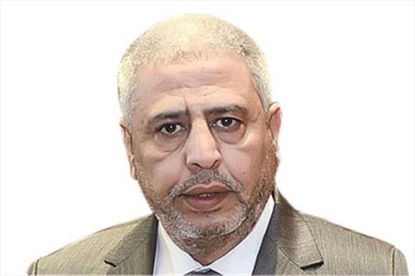 علاء الغمري، عضو غرفة شركات السياحة السابق