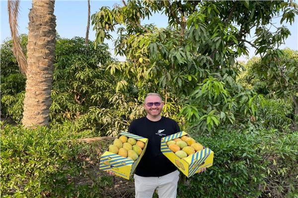 "سفير نيوزيلاندا ينشر صوره ب""صندوقين مانجو"" على تويتر"