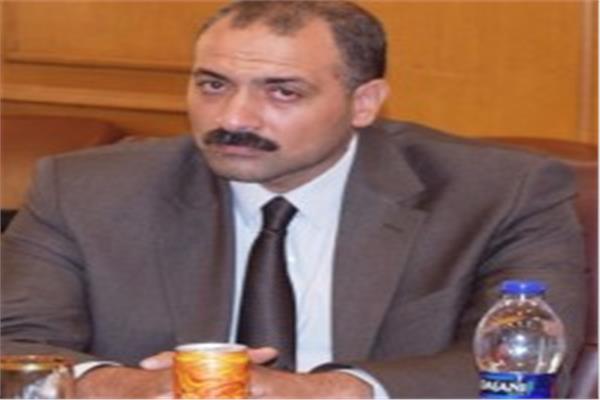 حاتم النجيب، نائب رئيس شعبة الخضار والفاكهة بالغرفة التجارية