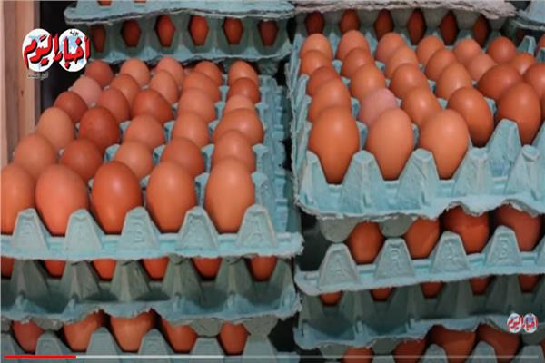 ارتفاع أسعار البيض