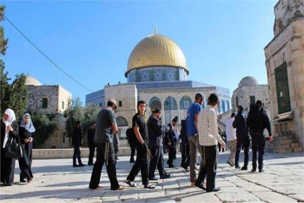 مستوطنون يقتحمون باحات المسجد الأقصى اليوم